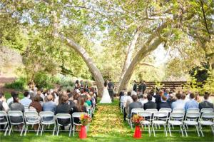 SycamoreV.Wedding2010Fence1